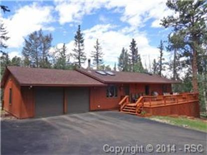 502 Spruce Lake Drive Divide, CO MLS# 7147745