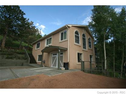 165 Timber Ridge Road Divide, CO MLS# 7186455
