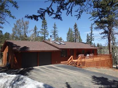 502 Spruce Lake Drive Divide, CO MLS# 7189360