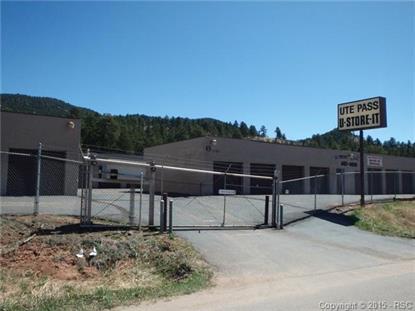 11120 W Highway 24  Woodland Park, CO MLS# 7206510