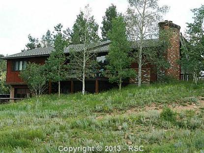 84 County 62 Road Divide, CO MLS# 723016