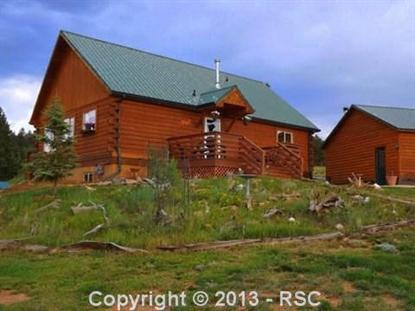 1443  Upper Twin Rocks RD, Florissant, CO