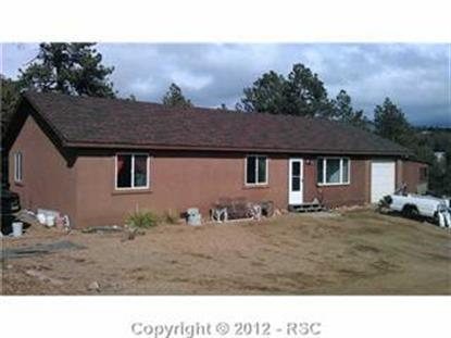 383  Valley View DR, Florissant, CO