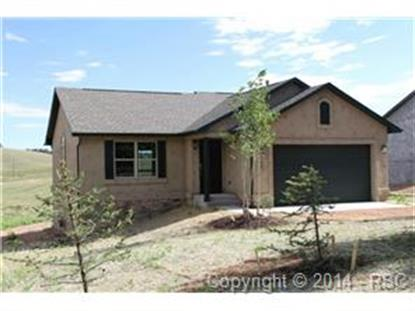 145 Aspen Drive Divide, CO MLS# 732429