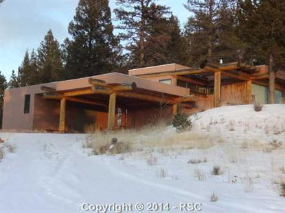 923 Old Ranch Road Florissant, CO MLS# 742276