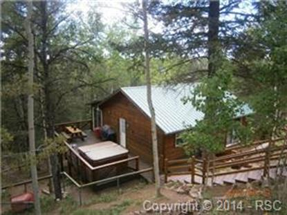 865 Calcite Drive Divide, CO MLS# 747837