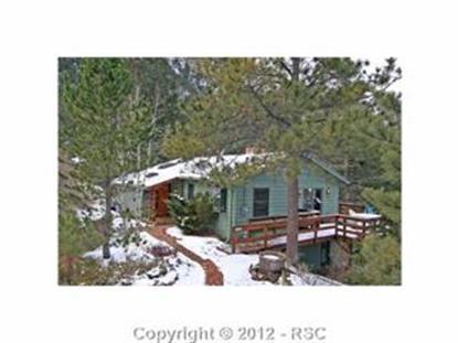 9980  Mohawk TR, Cascade, CO