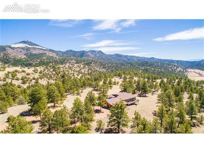 99 Corral Circle Florissant, CO MLS# 7514247