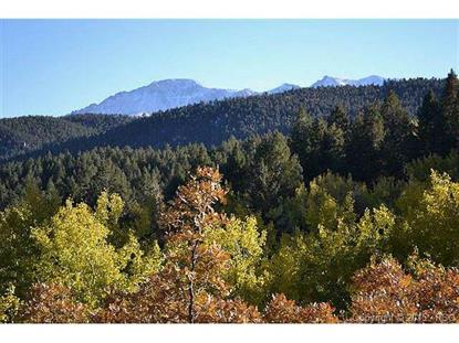 1342 Crystola Canyon Road Woodland Park, CO MLS# 756074
