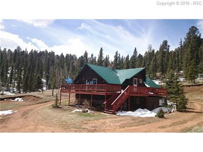 1699 Spring Valley Drive Divide, CO MLS# 7574431