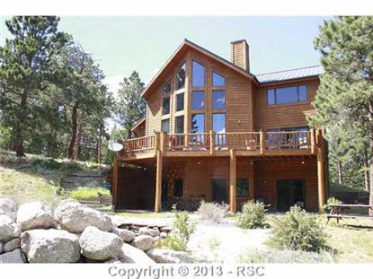 333 Columbine Place Woodland Park, CO MLS# 758960