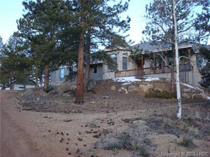 197 Bird Point Road Florissant, CO MLS# 7614315