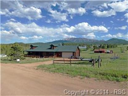 202 Pine Bluff Road Divide, CO MLS# 761968