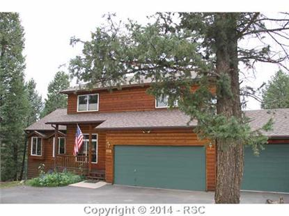 1485  County 512 RD, Divide, CO