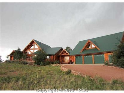 124 Stargate Heights Florissant, CO MLS# 774744