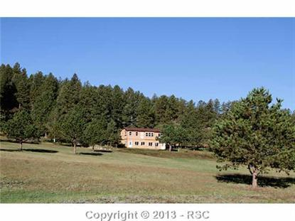17795  County 1 RD, Florissant, CO