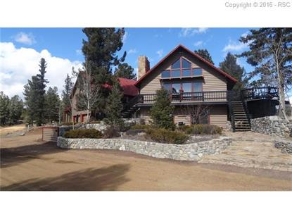 118 Sky View Circle Divide, CO MLS# 7775662