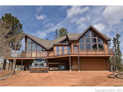 1251 Spring Valley Drive Divide, CO MLS# 7781186