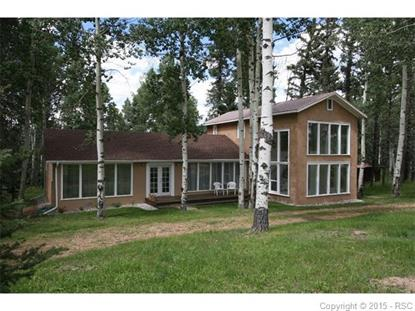 789 Ridge Drive Divide, CO MLS# 7809587