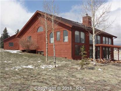 546 Ridge Drive Divide, CO MLS# 787855