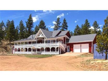 577 Pikes Peak Drive Florissant, CO MLS# 7992908