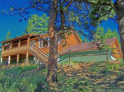 351 Deep Lake Drive Divide, CO MLS# 8053436