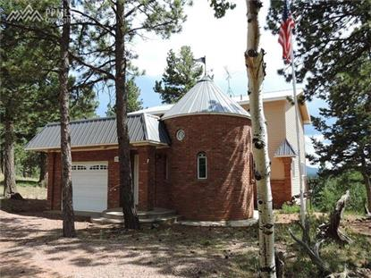 274 Spring Valley Drive Divide, CO MLS# 8124151