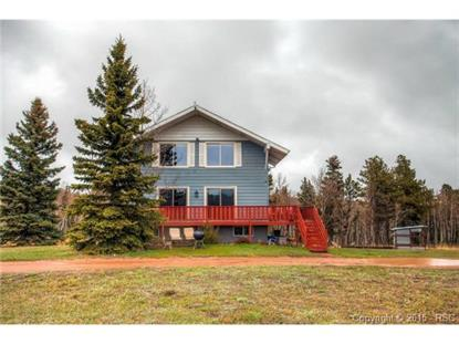 361 Pine Bluff Drive Divide, CO MLS# 8138785
