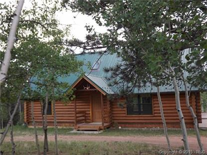 134 Rainbow Trail Divide, CO MLS# 8209442