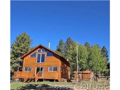 168 Cooper Lake Drive Divide, CO MLS# 8398012