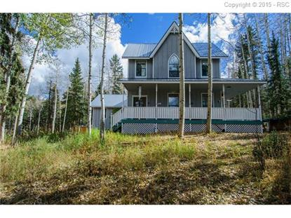 518 Divide South Road Divide, CO MLS# 8412317