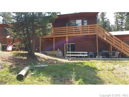 1313 SPRING VALLEY Drive Divide, CO MLS# 8451750
