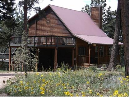 8823 Cedar Mountain Road Divide, CO MLS# 8464044