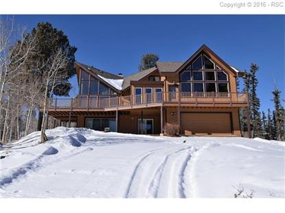 1251 Spring Valley Drive Divide, CO MLS# 8482644