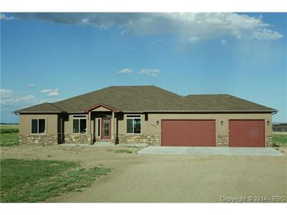 10935 McKissick Road Peyton, CO MLS# 8633168