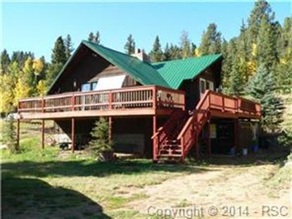 1699 Spring Valley Drive Divide, CO MLS# 8672353