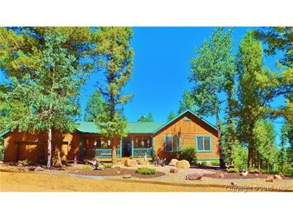 4055 Omer Lane Divide, CO MLS# 8700793
