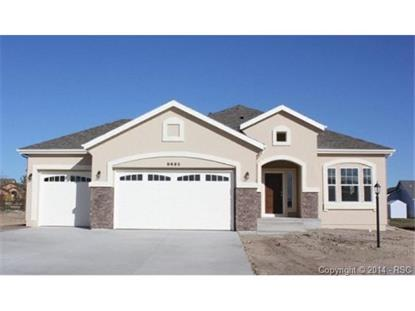 9695 Rockingham Drive Peyton, CO MLS# 8784015