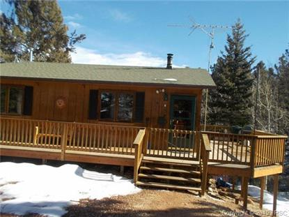 114 Heather Circle Divide, CO MLS# 8805996