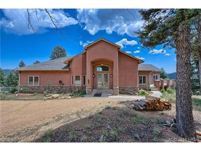 000 Lucky Lady Drive Woodland Park, CO MLS# 8812936