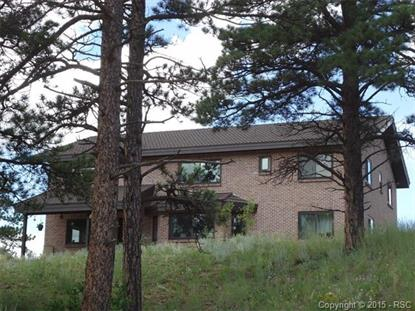 483 Pikes Peak Drive Florissant, CO MLS# 8916984