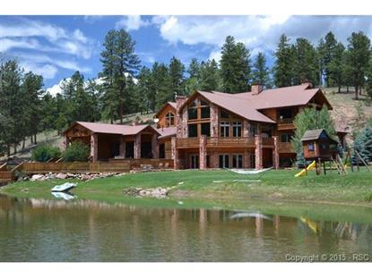 10 Kutsu Ridge Road Florissant, CO MLS# 8955530