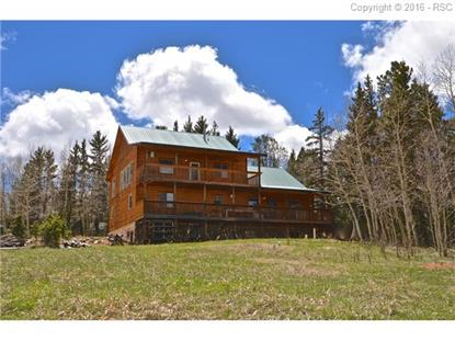 50 Worley Road Divide, CO MLS# 8997993