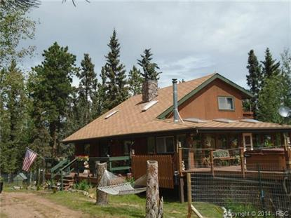 3106 Cedar Mountain Road Divide, CO MLS# 9077530