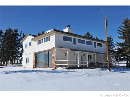 123 County 25 Road Divide, CO MLS# 9201217
