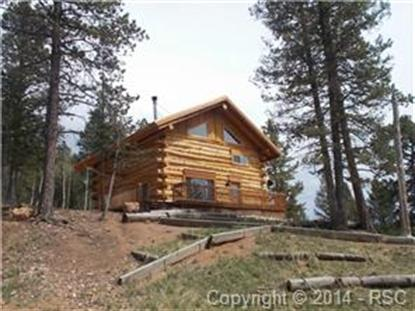 253 Wahsatch Road Divide, CO MLS# 9204779
