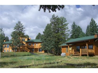 1737 County 782 Road Woodland Park, CO MLS# 9206022