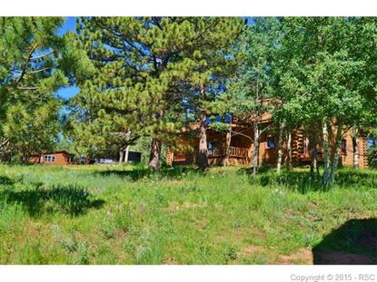152 County 511 Road Divide, CO MLS# 9340010