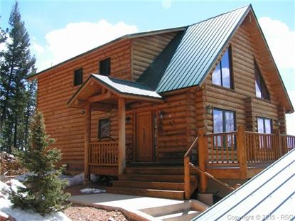 384 Witherite Drive Divide, CO MLS# 9459662