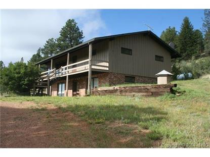 113 Aspen Vale Circle Florissant, CO MLS# 9478661